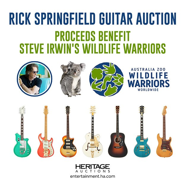 Rick Springfield Guitar Auction