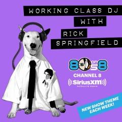 Working Class DJ with Rick Springfield
